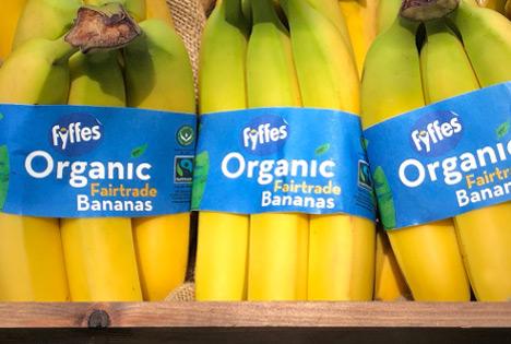 Fyffes Ireland führt als neue reduzierte Verpackung Bananen-Banderole ein