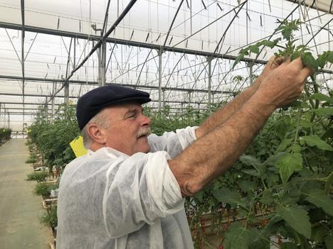 """Foto © """"obs/Fruit Vegetables Europe/Manuel Meyer"""""""