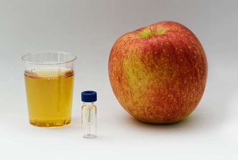 Geschmacks- und Geruchsanalyse . Foto © Andreas Dunkel / Leibniz-Institut LSB / TUM