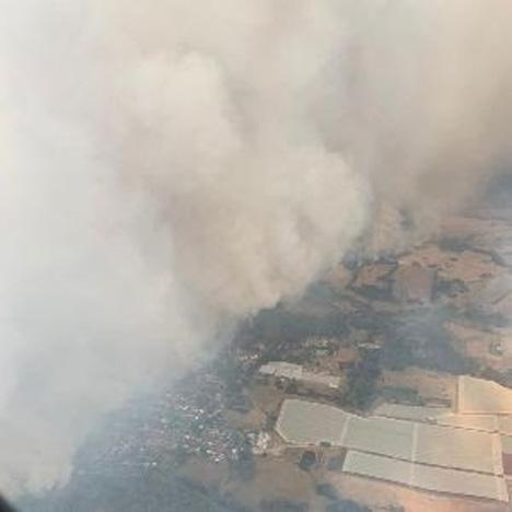 Blick auf Batlow-Feuer. Foto © APAL