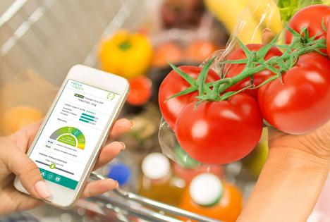 Forschungsprojekt Fresh Analytics: Mit künstlicher Intelligenz Lebensmittel retten