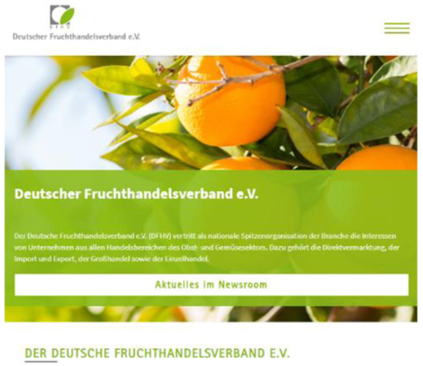 Relaunch der DFHV-Website. Foto © DFHV
