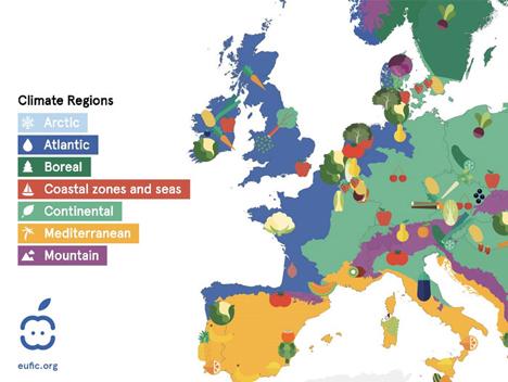 Bild © European Food Information Council