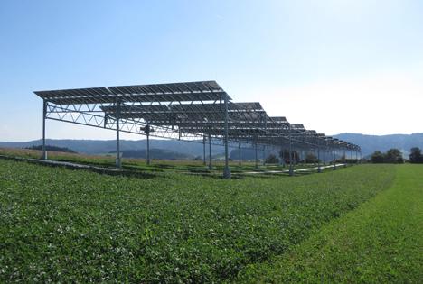 Agri-Photovoltaik-Pilotanlage. Foto © Fraunhofer ISE