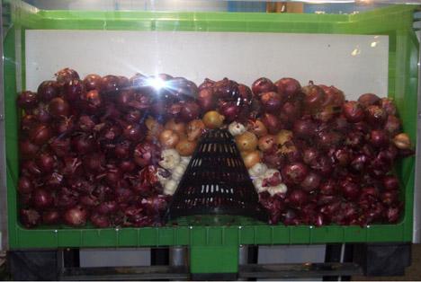 Airkit in einem Gemüsezwiebel-Behälter
