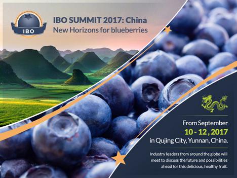 IBO Summit (Gipfeltreffen) 2017 BAnner