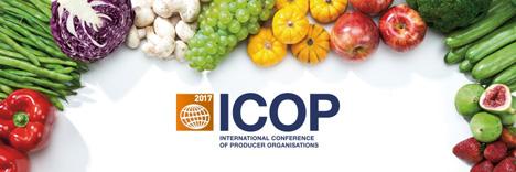ICOP 2017: Banner