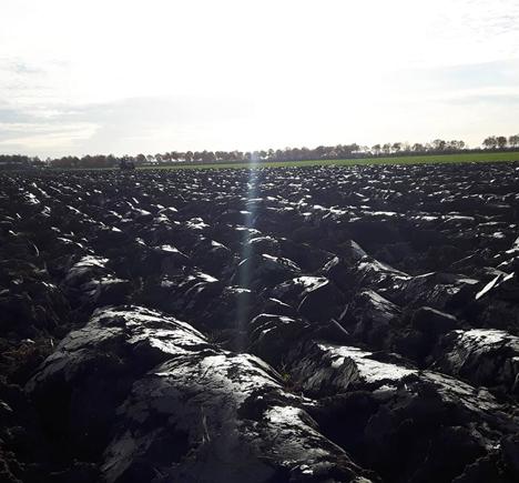 Das PotatoEurope Feld nach dem Pflügen. Foto © DLG Benelux