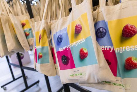 Global Berry Congress 2019 - Foto © Fruitnet Media International Group