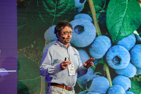 Foto © International Blueberry Conference
