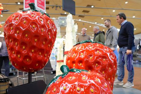Messeimpression expoDirekt. Foto © VSSE e.V. / Jürgen Rösner