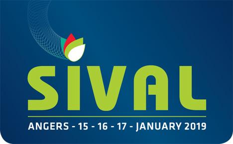 SIVAL Logo