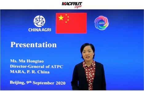 Ma Hongtao, Hauptgeschäftsführer der ATPC. Foto © Macfrut