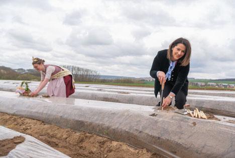 Ministerin Kaniber hat mit der Fränkischen Spargelkönigin die Spargelsaison eröffnet. Foto © Judith Schmidhuber / StMELF