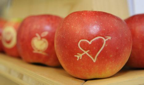 Apfel Foto © BBV