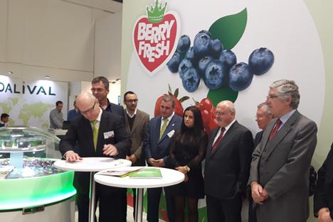 Bfruit und Special Fruit schließen strategische Allianz