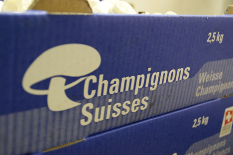 Dachmarke der Schweizer Pilzproduzenten. (ji, via Lid.ch)