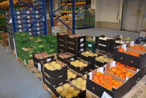 Im Kühlhaus lagert ein breites Angebot an Obst und Gemüse. © HMUKLV