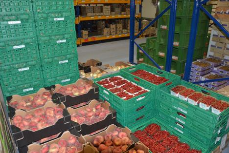 Passend zur Jahreszeit sind nun auch Weinbergpfirsiche und Johannisbeeren im Angebot. © HMUKLV