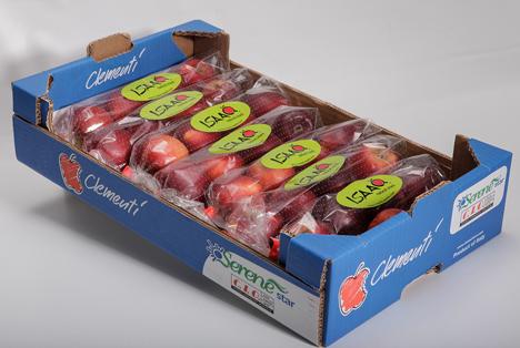 Die neue 4-Früchte Verpackung in einem Standard-Einlager-Karton von Clementi