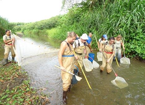 ANAI Costa Rica und Platanera Río Sixaola beim gemeinsamen Biomonitoring des Río Sand Box. Foto Platanera Río Sixaola