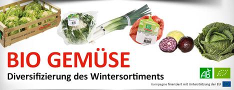 Bild: Prince de Bretagne Bio-Gemüse: Diversifizierung des Wintersortiments
