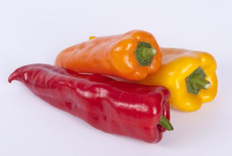 Reichenau-Gemüse eG  Paprika