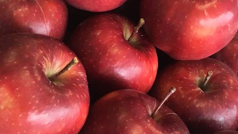 Tesco: Neue Apfelsorte wird englische Apfelsaison revolutionieren