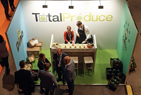 Foto: Total Produce B.V. Dino Melone