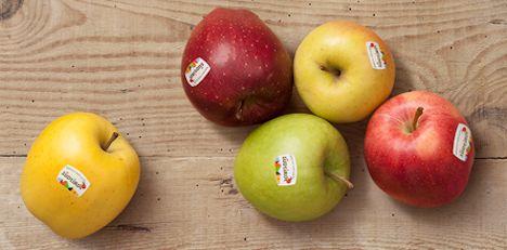 Südtiroler Apfel g.g.A.