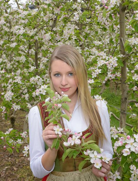 frisch-saftig-steirisch  Apfelblüte