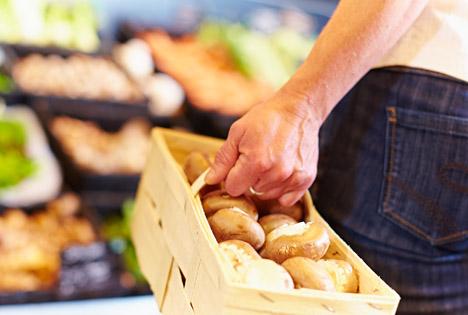Die Ernte frischer Speisepilze ist aufwendige Handarbeit, diese Ware muss deshalb einen fairen Preis haben. Foto: GMH/BDC