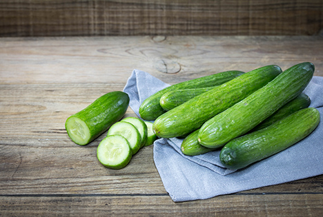 BVEO Salatgurke. Foto © BVEO