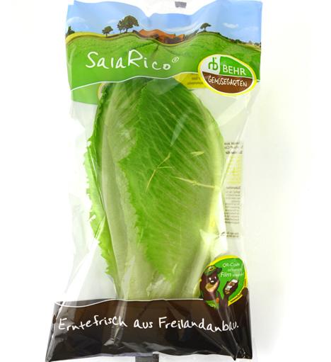 SalaRico in der GemüseGarten-Verkaufsverpackung. (Quelle: BEHR AG)
