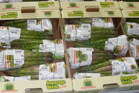 Asparago verde di Altedo IGP – Spitze dank Qualittä und Konsum. Foto © CSO Italy