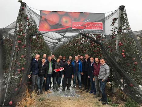Apfel Foto Crimson Snow®