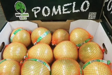 Don Limóns Honig-Pomelos aus China