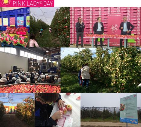Foto © Pink Lady® Europe
