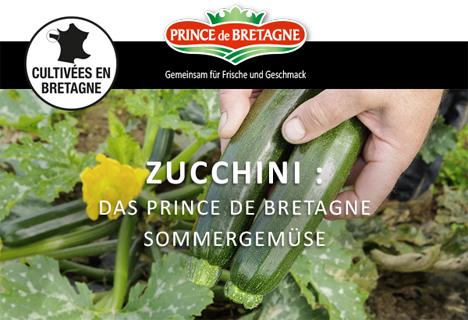 Prince de Bretagne Zucchini