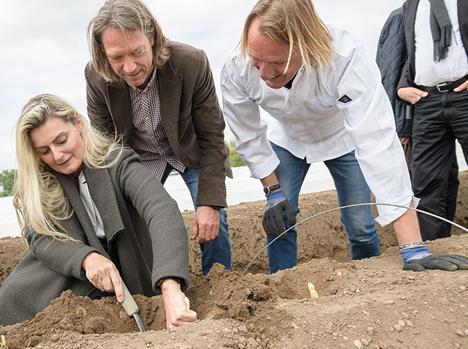 QS-Expertin Sonja Pfeifer, Spargelerzeuger Christian Deyerling und Sternekoch Frank Buchholz (v.l.) stechen den ersten Spargel (Bildquelle: ad lumina Ralf Ziegler)