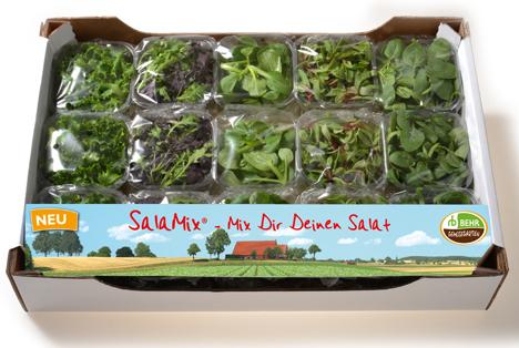 Mix Dir Deinen Salat: Ob allein oder zu zweit – Mit SalaMix macht Salatessen Spaß