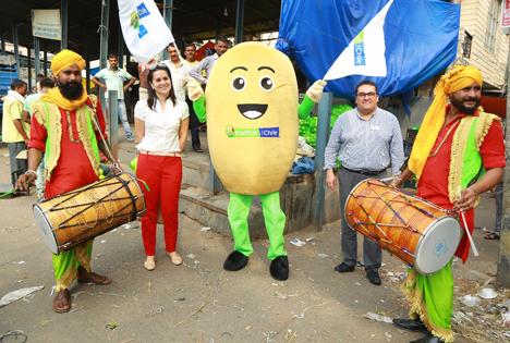 Chilenische Kiwi erstmals in indischem Online-Handel verkauft