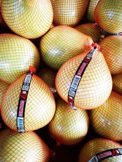 Pomelos Foto © Don Limón