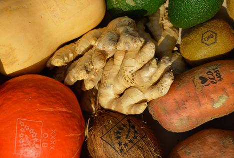 """Bio-Obst und -Gemüse mit """"Natürlichem Labeling"""". Foto © Eosta BV"""