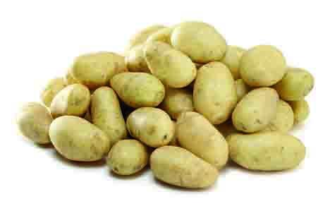Kartoffeln Foto © HOFER