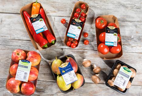 NORMA baut gesundes O&G-Markenprogramm immer weiter aus