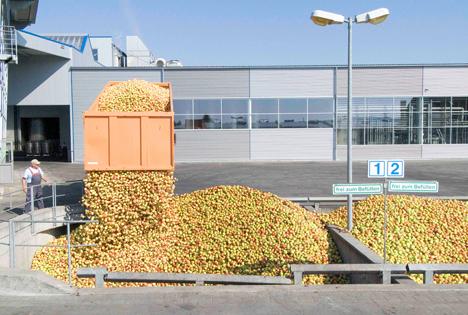 Die Verarbeitung der Streuobsternte 2018 läuft bei den rund 360 Fruchtsaftherstellern bundesweit auf Hochtouren. Foto © VdF
