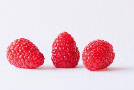 'Sarafina' Foto © Advanced Berry Breeding