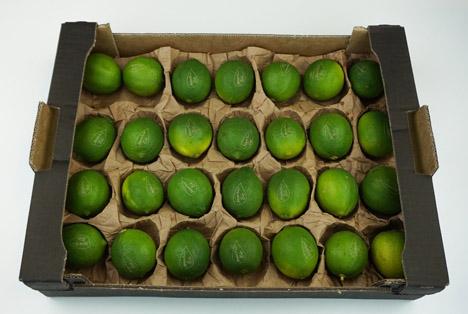 Eosta präsentiert nachhaltige Obsteinlagen aus Papier