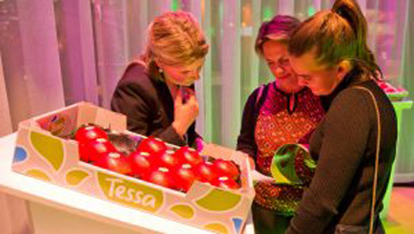 Apfel Tessa® Foto © FruitMasters